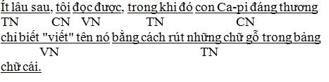 tim-chu-ngu-vi-ngu