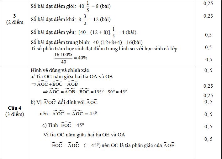 Đáp án câu 3,4