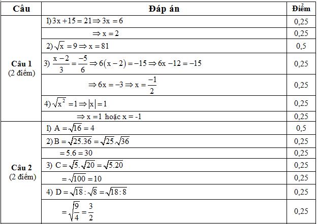 DAP AN CAU 12
