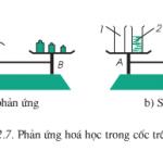 Bài tập 1,2,3 trang 54 Hóa học 8: Định luật bảo toàn khối lượng