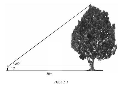 hinh50