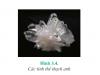 Bài 1,2,3, 4,5,6 trang 79 SGK Hóa lớp 11: Silic và hợp chất của silic