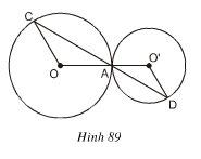 hinh89