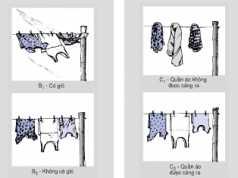 Bài C1 – C10 trang 80,81,82 SGK vật Lý 6: Sự bay hơi và sự ngưng tụ