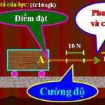 Giải bài 1,2,3 ,4,5 trang 65 vật lý 8: Câu hỏi và bài tập tổng kết chương 1 Cơ học