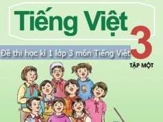 Đáp án đề thi học kì 1 môn Tiếng Việt lớp 3 – TH Lý Thường Kiệt 2017