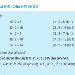 Bài 1,2,3,4 trang 95 SGK Toán 4: Dấu hiệu chia hết cho 2