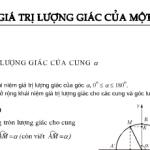 Bài 1,2,3 ,4,5 trang 148 Đại số 10: Giá trị lượng giác của một cung