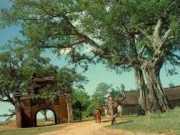 Ông Hai trong truyện ngắn Làng là một người yêu mến, gắn bó với làng quê mình