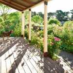 Hãy tả lại khu vườn trong một buổi sáng đẹp trời