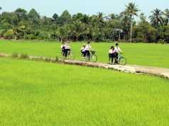 Tả con đường làng vào buổi sáng lúc em đi học