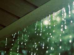 Một lần em đang đi học thì trời mưa bất chợt. Em hãy tả lại cảnh đó