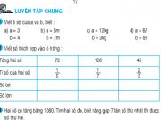 Luyện tập chung về tỉ số – Bài tập 1,2,3,4,5 trang 149