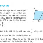 Bài 1,2,3,4 trang 171 SGK Toán 5: Luyện tập về giải toán tiết 165