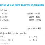 Bài tập 1,2,3,4,5 trang 162,163 SGK Toán lớp 4: Ôn tập về các phép tính với số tự nhiên tiết 155