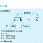 Bài 1,2,3,4 trang 163,164 môn Toán 5: Phép chia tiết 155