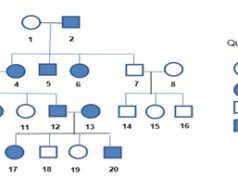 [Thi kì 1 sinh 12] Đề gồm 40 câu trắc nghiệm: Bệnh phênikitô niệu là bệnh di truyền do?