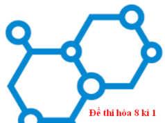 [Trắc nghiệm +Tự luận] Kiểm tra Hóa 8 học kì 1: Số phân tử của 16 gam khí oxi là?