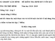 Thi học kì 1 môn Tiếng Việt lớp 5 có đáp án 2018 – tả một người thân của em mà em yêu quý