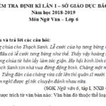 Thi học kì 1 môn Văn lớp 6 Sở GD Bắc Ninh 2018 – Đoạn trích trên được kể theo ngôi thứ mấy