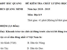 Đáp án đề kì 1 môn Địa lớp 9 THCS Quang Minh Vẽ biểu đồ thể hiện giá trị sản xuất