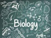 Kiểm tra 1 tiết môn Sinh học 7: Tại sao khủng long bị diệt vong ?