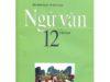 Kiểm tra học kì 2 môn Ngữ văn 12: Hành động cao đẹp của bé Hải An đã truyền cảm hứng như thế nào trong xã hội?