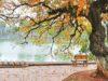 """Đề thi cuối học kì 2 môn Văn lớp 9 Phòng GD Quận Hai Bà Trưng: Chép chính xác khổ thơ thứ hai trong bài thơ """"Sang thu"""""""