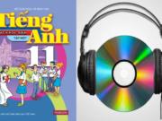 Unit 5. Being Part Of Asean: Giải bài Vocabulary – Phần từ vựng SGK Tiếng Anh 11 Thí điểm