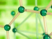 Kiểm tra 1 tiết môn sinh 6: Chất dự trữ của hạt Hai lá mầm (như hạt đậu đen…) chứa ở đâu ?