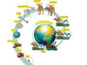 Đề kiểm tra 15 phút Chương 3 Sinh lớp 11: Hoocmôn sinh trưởng (GH) được sinh sản ra ở đâu?