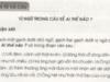 Luyện từ và câu : Vị ngữ trong câu kể Ai Thế Nào ? trang 15 SBT (VBT) Tiếng Việt lớp 4 tập 2: Bộ phận vị ngữ của mỗi câu vừa tìm được do những từ ngữ nào (tính từ hay cụm tính từ) tạo thành