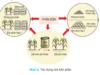 Bài 7. Tác dụng của phân bón trong trồng trọt – Công nghệ lớp 7: Phân hữu cơ gồm những loại nào ?