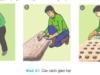 Bài 16. Gieo trồng cây nông nghiệp -Công nghệ 7: Có xử lí hạt giống không , nếu có thì thường xử lí theo cách nào ?