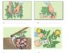 Bài 20. Thu hoạch, bảo quản và chế biến nông sản- Công nghệ 7:Bảo quản nông sản nhằm mục đính gì và bằng cách nào ?