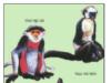 Bài 1, 2, 3, 4 trang 7 SBT Sinh 7: Nếu giới Động vật không còn, liệu con người có tồn tại được không ?
