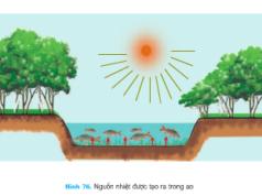 Bài 50. Môi trường nuôi thủy sản – Công nghệ 7: Em hay nêu tóm tắt tính chất lý học của nước nuôi thuỷ sản?