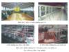 Bài 34. Tạo môi trường sống cho vật nuôi và thủy sản – Công nghệ 10: Vì sao phải xử lí chất thải chăn nuôi?