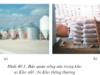 Bài 40. Mục đích, ý nghĩa của công tác bảo quản, chế biến nông, lâm, thủy sản – Công nghệ 10.