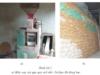 Bài 44. Chế biến lương thực, thực phẩm – Công nghệ 10: Trình bày một số phương pháp chế biến sắn và quy trình chế biến tinh bột sắn.