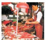 Bài 46. Chế biến sản phẩm chăn nuôi, thủy sản- công nghệ 10: Hãy nêu một số phương pháp chế biến cá mà em biết, quy trình chế biến ruốc từ cá tươi.