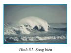 Bài 24. Biển và đại dương – Địa lí 6: Hãy nêu nguyên nhân của hiện tượng thuỷ triều trên Trái Đất.