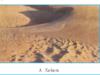 Bài 12. Thực hành: Nhận biết đặc điểm môi trường đới nóng – Địa lớp 7: Quan sát 5 biểu đồ nhiệt độ và lượng mưa trang 41