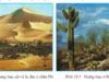 Bài 19. Môi trường hoang mạc – Địa lí 7: Hoang mạc trên thế giới thường phân bố ở đâu ?