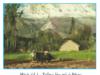 Bài 44. Kinh tế Trung và Nam Mĩ – Địa lí 7: Cho biết các cây trồng vật nuôi chính ở Trung và Nam Mĩ.