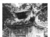 Bài 12. Nước Văn Lang – lịch sử 6 : Những lí do ra đời của nhà nước thời Hùng Vương là gì ?
