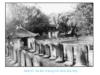 Bài 20 phần 3: Nước Đại Việt thời Lê Sơ – Lịch sử 7: Em có nhận xét gì về tình hình văn học thời Lê sơ ?