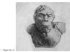 Bài 1. Sự xuất hiện loài người và bầy người nguyên thủy – Lịch sử 10: Thế nào là bầy người nguyên thủy ?