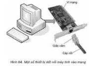 Bài 20. Mạng máy tính – Tin học 10: Hãy trình bày sự hiểu biết của em về các thành phần của một mạng máy tính