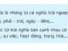 Soạn bài Luyện từ và câu: Từ trái nghĩa – trang 38 Tiếng Việt 5 tập 1 – Sống chết; vinh nhục ( vinh: được kính trọng, đánh giá cao; nhục: xấu hổ vì bị khinh bi).